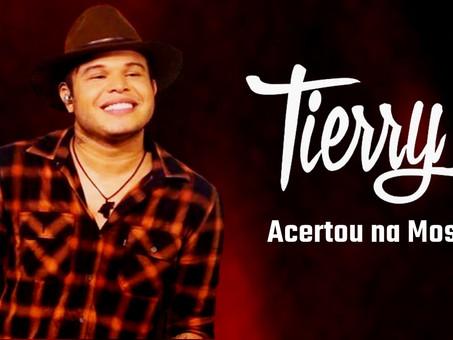 Tierry, Gusttavo Lima - Acertou na Mosca   Sertanejo Remix   By. DJ DuLLy