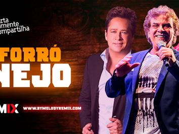 ForróNEJO 11 | Sertanejo em Ritmo de Forró | Leonardo, Matogrosso & Mathias | Remix 2021