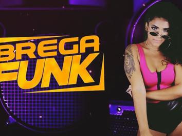 TOP BREGA FUNK Remix 2021   SEQUÊNCIA SÓ OS MELHORES REMIX