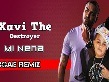 Xavi Destroyer - Mi Nena Ft. Zion Y Lennox | Reggae Remix | By. Hudson Leite & Thaellysson Pablo