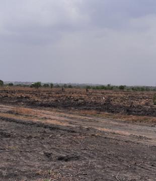 FAIM REALTORS Shai Hills Lands for sale