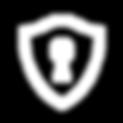icons8-escudo-com-fechadura-96.png