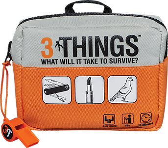 3ThingsBag.png