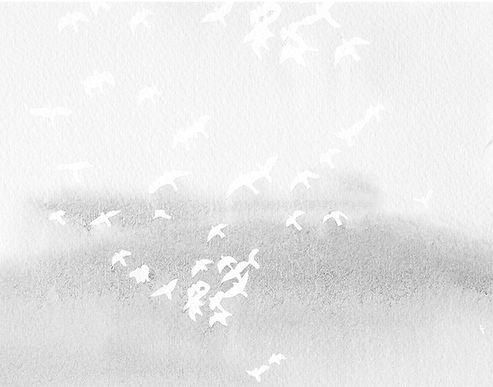 FTBAC Banner BG Bird Half.jpg