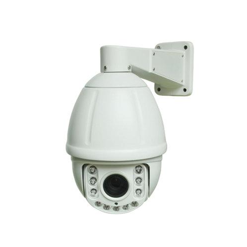 DM IP800