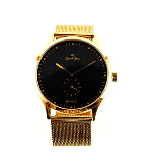 Gold watch 1.jpg