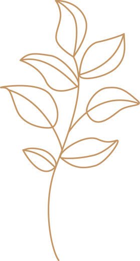 Leafy branch-1.png