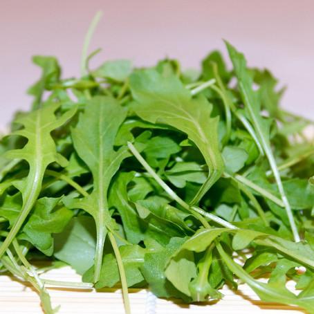 Gemüse & Obst für deinen Hund im April