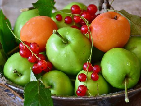 Gemüse & Obst für deinen Hund im August