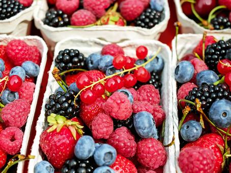 Gemüse & Obst für deinen Hund im Juli