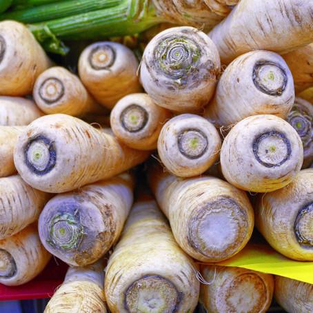 Gemüse & Obst für deinen Hund im Dezember