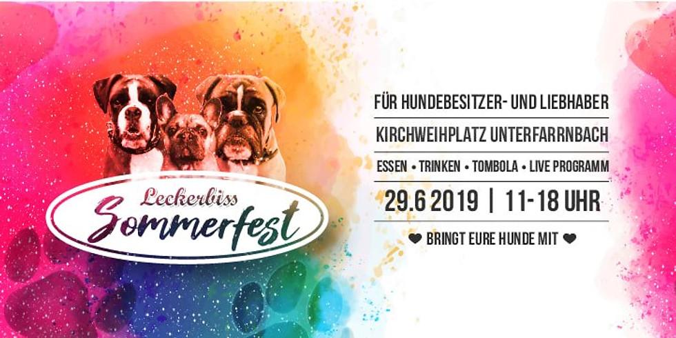 Hunde-Sommerfest