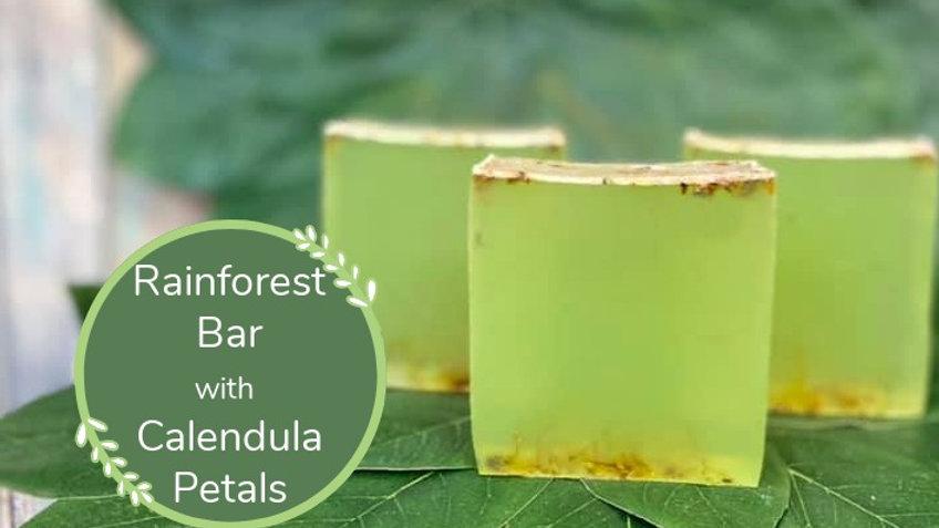 Rainforest Bar
