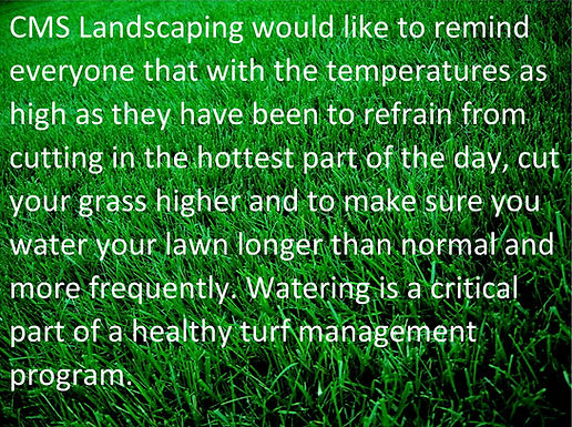 How to care for your lawn during these HOT temperatures