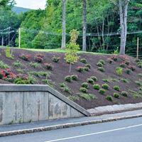 Landscape Project - After