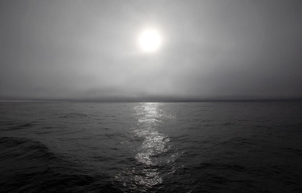 Antarctica Seascape III