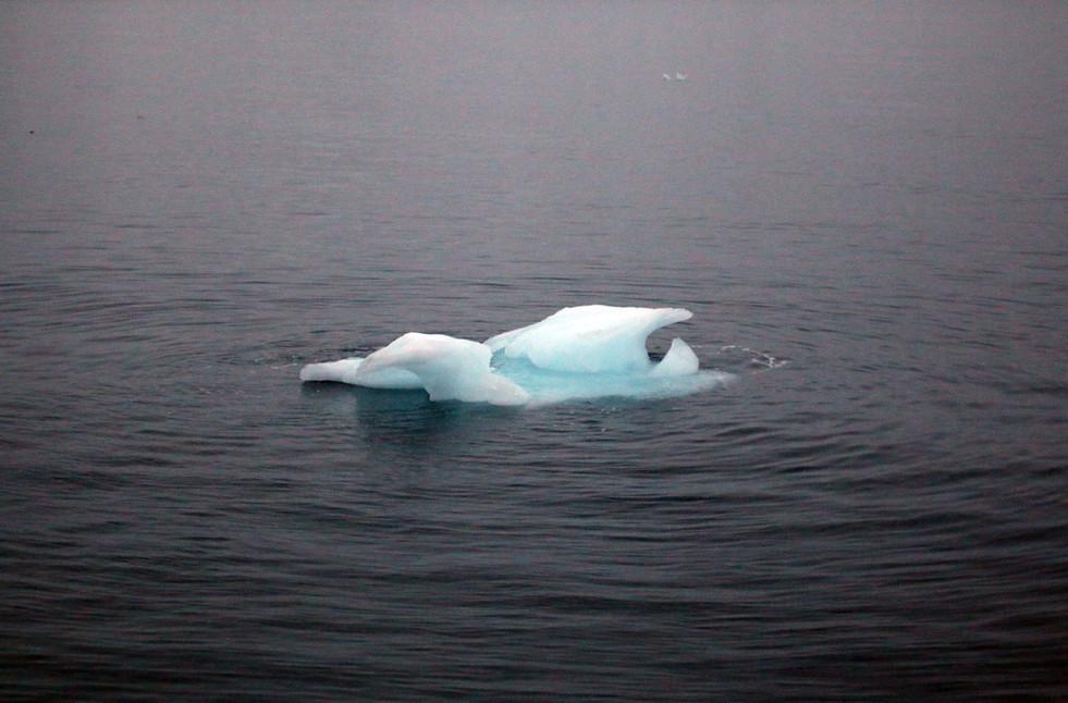 Arctic Ice VI