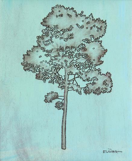 Pine IV