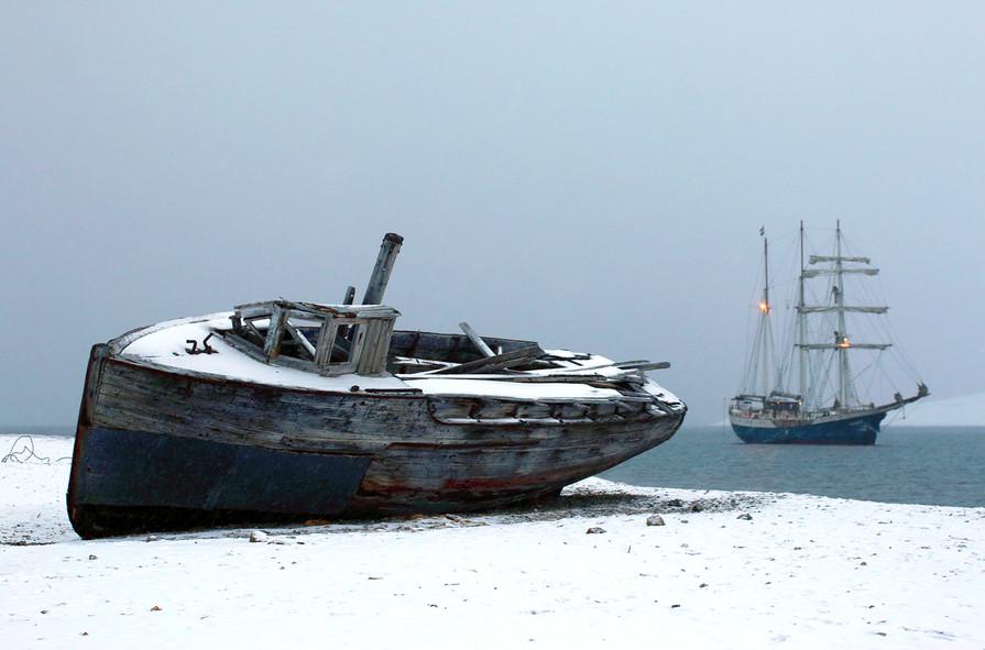 Arctic Antigua II