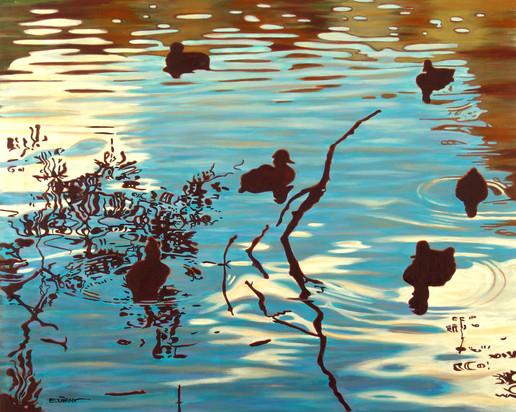 Hampstead Ducks I