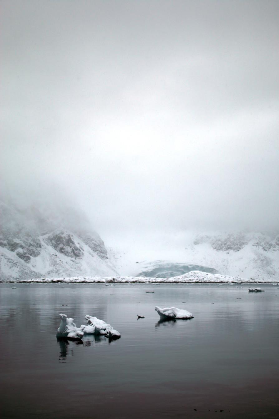 Arctic Ice X