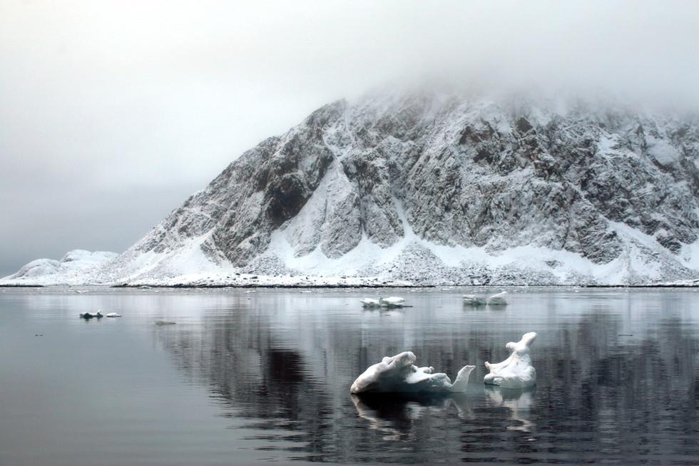 Arctic Ice XIII