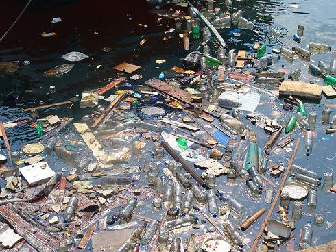 Day7_Eubank_litter.jpg