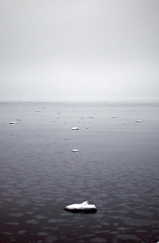 Arctic Ice IX