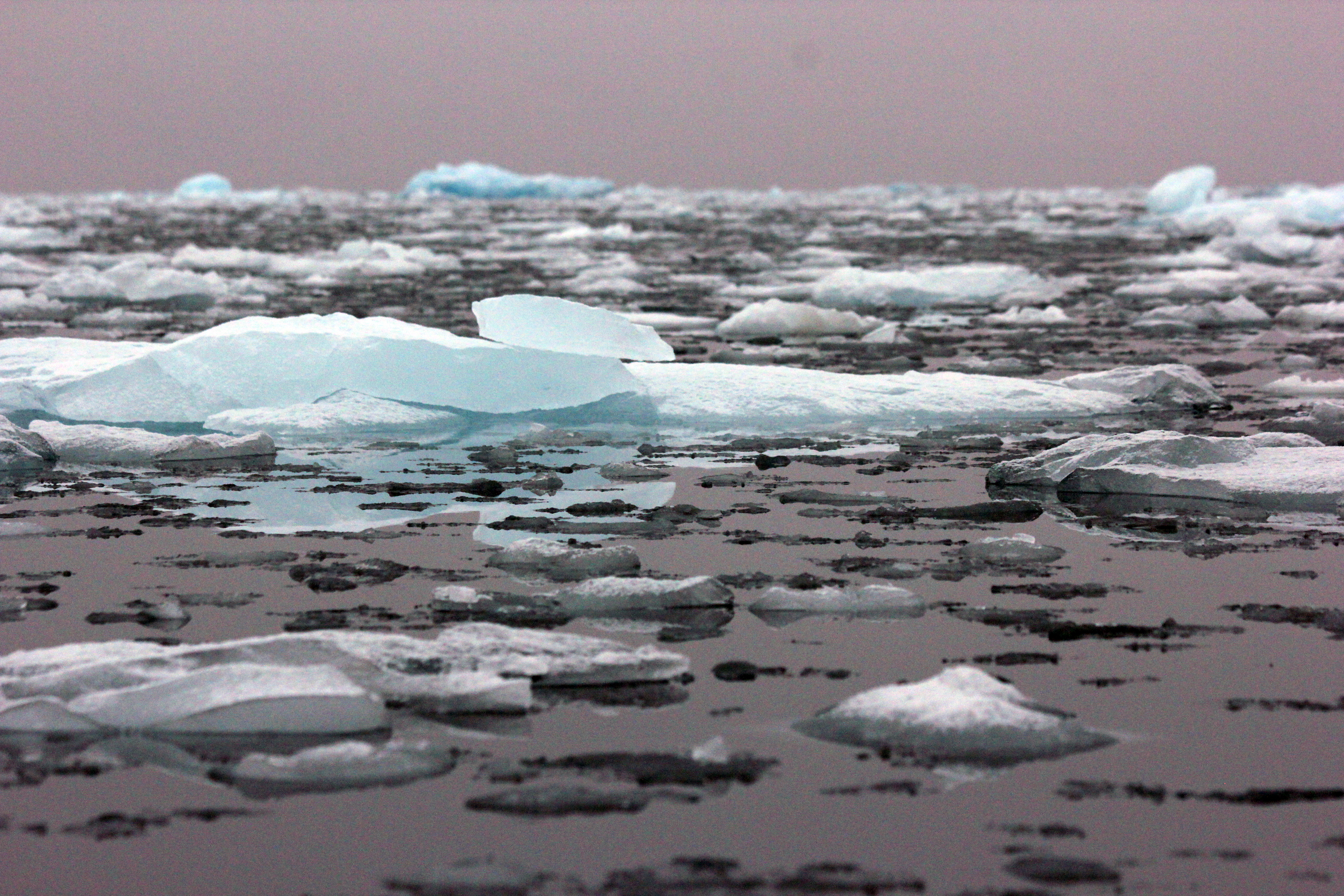 Ice_on_Arctic_Ocean_credit_Danielle_Eubank_Svalbard_Oct2014