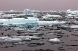 Ice_on_Arctic_Ocean_credit_Danielle_Eubank_Svalbard_Oct2014