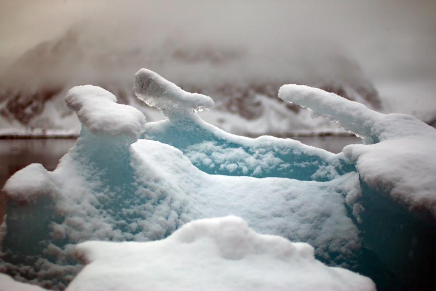 Arctic Ice XI
