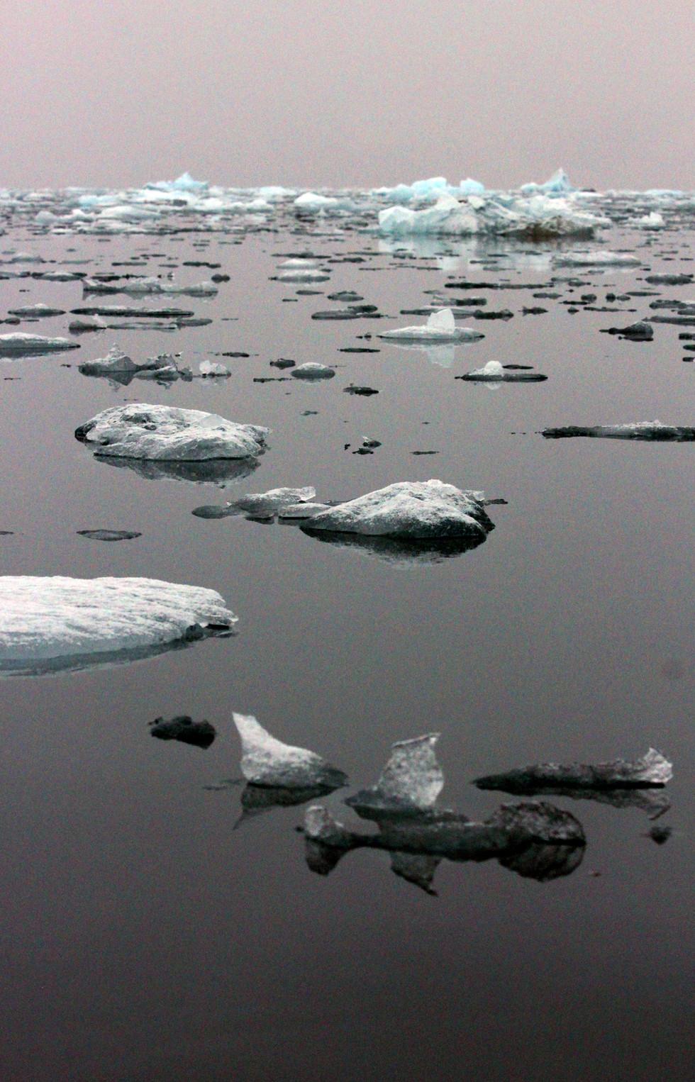 Arctic Seascape IV