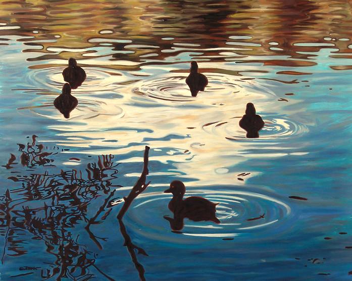 Hampstead Ducks II
