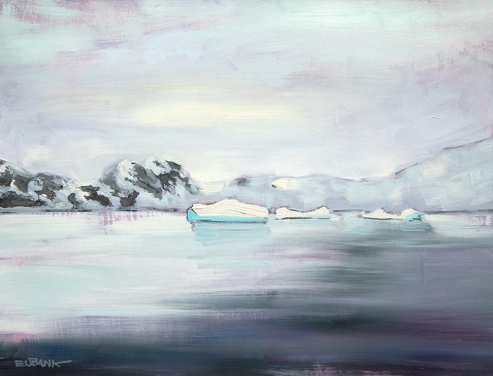 Antarctica Ice VI