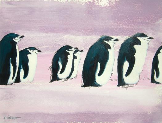 Antarctica Penguins III