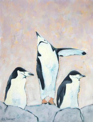 Antarctica Penguins II