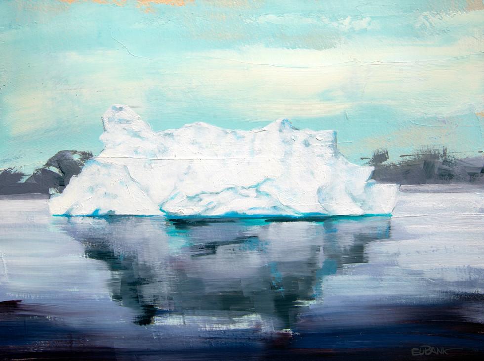 Antarctica Ice VIII