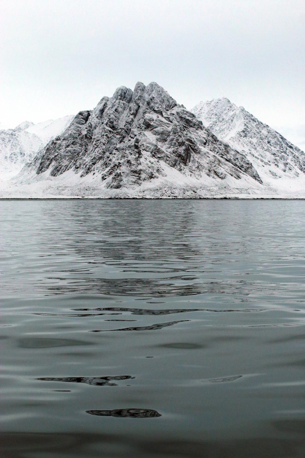 Arctic Mountain I