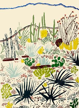 Sonoran Desert.png