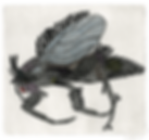 NothingFly.png