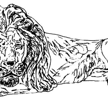Bronze Lion
