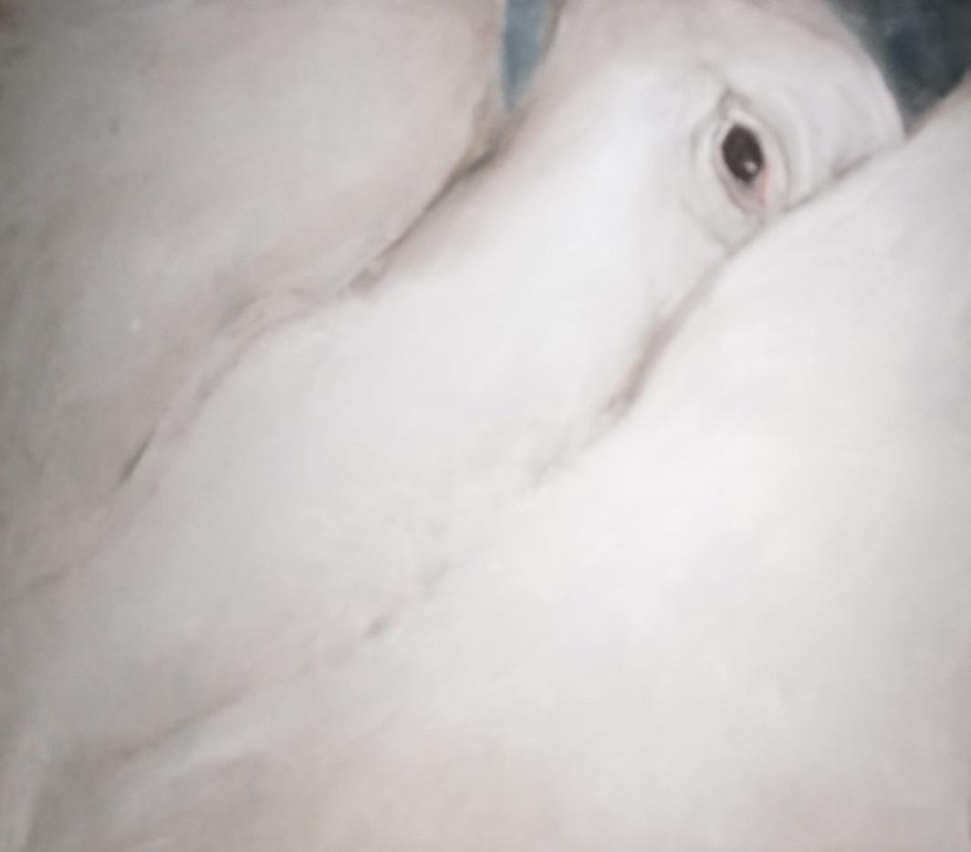 White Bird III