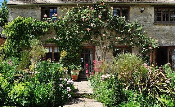 41_Climbing_rose_&_terrace_garden.jpg