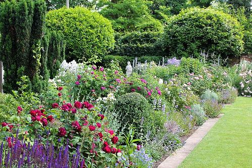 South-garden-4.jpg