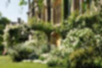 white-garden-1024x680.jpg