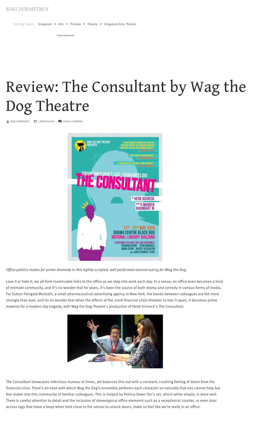 Review-_The_Consultant_by_Wag_the_Dog_Th
