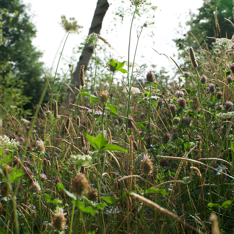 Rejuvenate:Self Care Routine for Summer