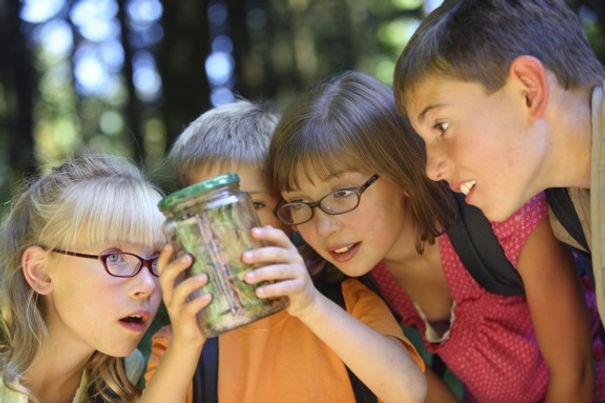 kids bug jar.jpg