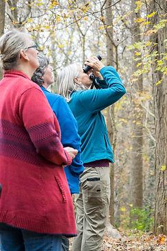 birds 2 and closing_TN naturalists 2017_