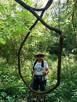 hiker in grape vines.jpg